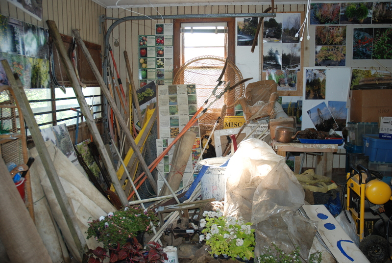 Get rid of the junk cluttering up your spirit!  - Naturopathy, Naturally