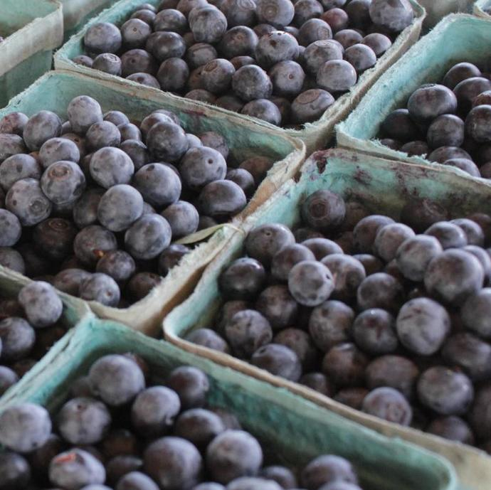 Blueberries - full of the good stuff!
