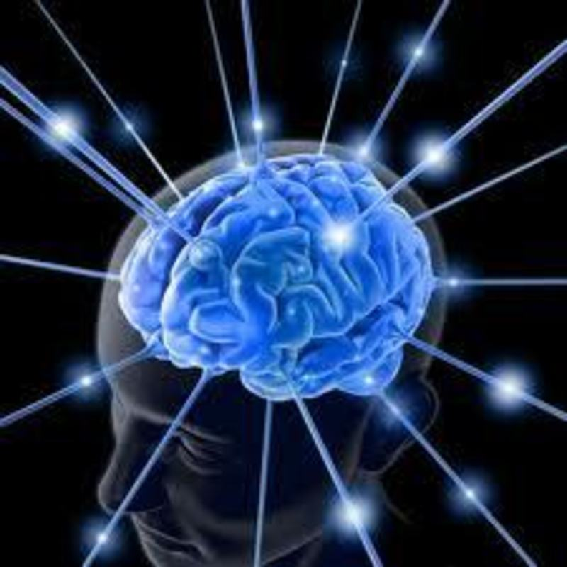 brain, neuroplasticity, metta meditation, loving kindness, gamma waves