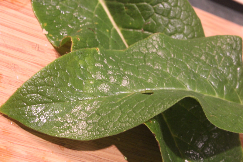 Comfrey leaf paste
