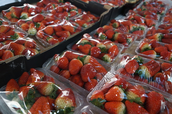 strawberries, marketplace, berries, fresh produce